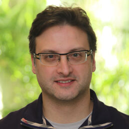 Professor Vince Tropepe